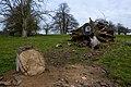 Trees in Londesborough Park - geograph.org.uk - 1229703.jpg