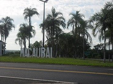 Macaubal São Paulo fonte: upload.wikimedia.org