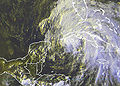 Tropical Storm Arlene Jun 9 2245 UTC.jpg