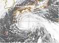 Typhoon Judy 1989.jpg