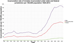 Race and crime in the United States - A graph showing the Incarceration rate under state and federal jurisdiction per 100,000 population 1925–2008. It does not include jail inmates. The male incarceration rate is roughly 15 times the female incarceration rate.