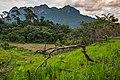 USAID Measuring Impact Conservation Enterprise Retrospective (Philippines; Nagkakaisang Tribu ng Palawan) (26420937328).jpg