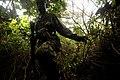 Ugandan Army Land Navigation Course DVIDS81189.jpg