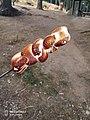 Uludağ Milli Parkında marshmello keyfi.jpg