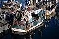 Un chalutier de pêche côtière (13).jpg