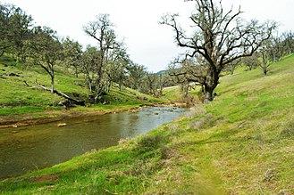 Eticuera Creek - Normal flows in upper Eticuera Creek during a calm winter day