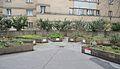 Urban gardening behind Matteottihof.jpg