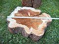 Urweltmammutbaum Metasequoia glyptostroboides, alter 25 Jahre.jpg