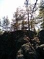 Utkikstorn på Jättstuberget.jpg