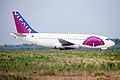 VIP-Air Boeing 737-248 (TC-VAA 147 19424) (7960395554).jpg