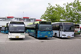 v.l.n.r. Connexxion Berkhof Ambassador 200, Connexxion Alliance en Connexxion Interliner Volvo 8700LE. Foto op Rotterdam Capelsebrug (metrostation)