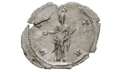 Vesta antoninianus.png