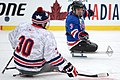 Veterans 2015 NHL Winter Classic 150102-D-DB155-007 (15993766978).jpg