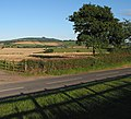 View across the fields to May Hill - geograph.org.uk - 509680.jpg