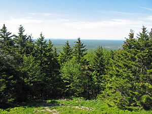 Lead Mountain (Maine) - Image: View from Lead Mountain