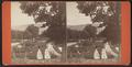 View in the Eldridge Park, Elmira, N.Y, by J. H. Whitley.png