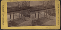 View of elevated railway with train, from Robert N. Dennis collection of stereoscopic views.png