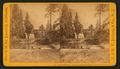 View on the Merced. Hutching's Hotel and Bridge. Sentinel rock in distance, by E. & H.T. Anthony (Firm) 2.png