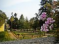 Villa Medicea 175.jpg