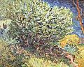Vincent Willem van Gogh 031.jpg
