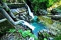 Vintgar Gorge (35423918840).jpg