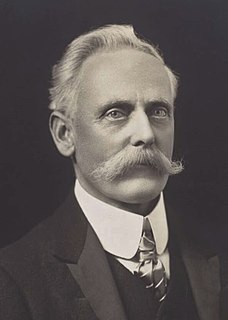 William McWilliams Australian politician