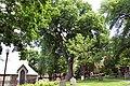 WPQc-066 Cimetière St-Matthew 1771-1860.JPG