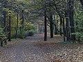 Waldpark Blasewitz (1913).jpg