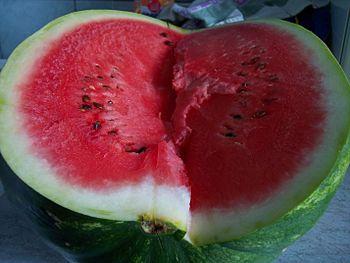 (Watermelon) Citrullus lanatus