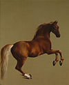 Whistlejacket by George Stubbs.jpg