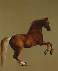 200px-Whistlejacket_by_George_Stubbs.jpg