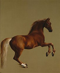 George Stubbs: Whistlejacket