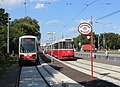 Wien-wiener-linien-am-31-1100603.jpg