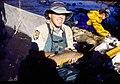 Wild trout project e walker river bridgeport0118 brown trout (26275755345).jpg