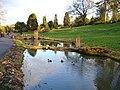 Wisley Gardens Ponds - geograph.org.uk - 322275.jpg
