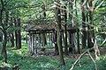 Wrześniowy spacer - panoramio (2).jpg