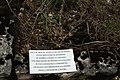 Xaffévillers cimetière 03.JPG