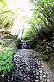 Yorokoen, Yoro, Yoro District, Gifu Prefecture 503-1254, Japan - panoramio (1).jpg
