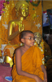 Young Indian Buddhist monk in India.
