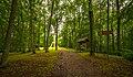 Zilaiskalns (Reserve) 3.jpg