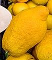 Zitronen Sizilien jm59190.jpg