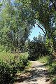 Zwin Natuurpark R25.jpg