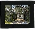 """Arcady,"" George Owen Knapp house, Sycamore Canyon Road, Montecito, California. Lower garden, walkway to exedra LCCN2007684899.jpg"