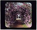 """Armsea Hall,"" Charles Frederick Hoffman Jr. house, Narragansett Bay, Newport, Rhode Island. LOC 7221364694.jpg"