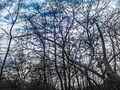Ρέμα Χελιδονούς HDR - panoramio (1).jpg