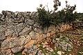 Το αρχαίο κάστρο στη Κομπωτή. - panoramio - Spiros Baracos (3).jpg