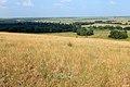 Вид с горы Брагина в юго восточном направлении - panoramio.jpg