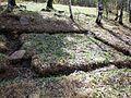 Г. Златоуст - скала 7 братьев - panoramio (1).jpg
