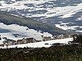 Дикие северные олени - символ Лапландского заповедника.jpg