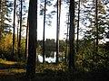 ЗЕЛЕНОГОРСК - Ефрейторское озеро - ТЬМА и СВЕТ (2).jpg